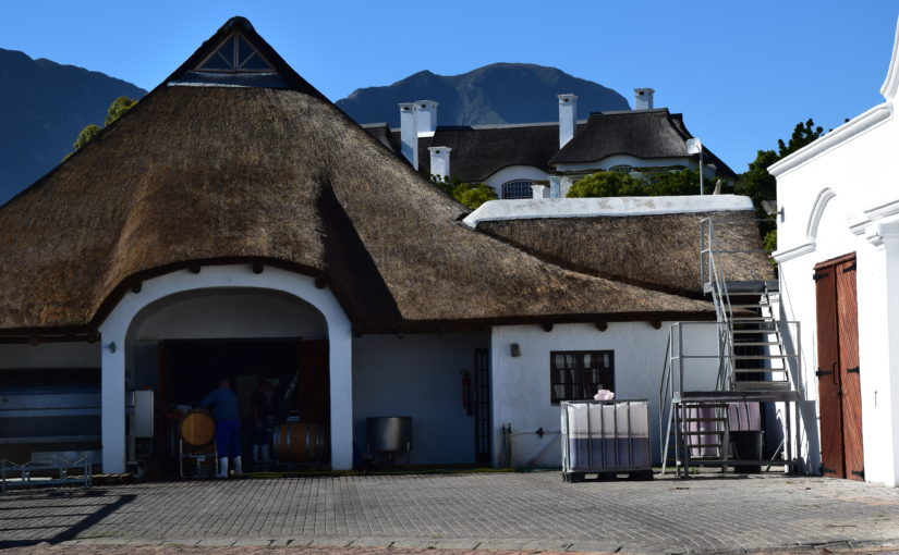 Südafrikas Spitzenweine – zu Besuch bei Bouchard Finlayson in Hemel-en-Aarde